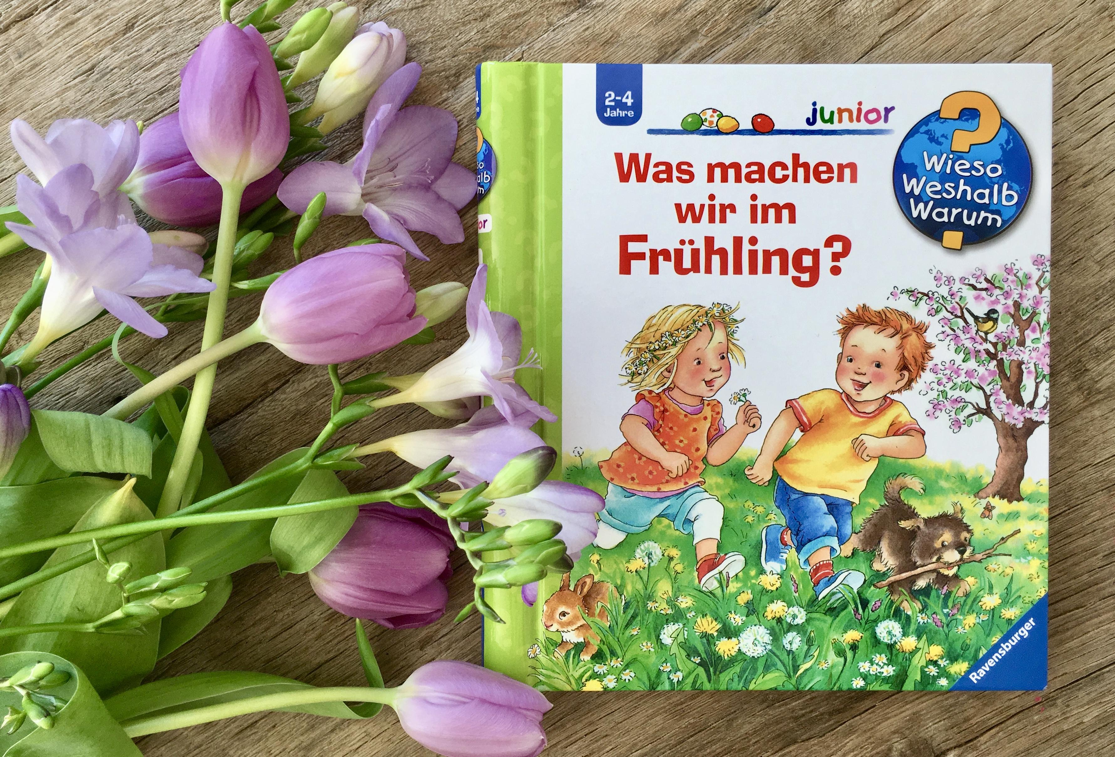 Was machen wir im Frühling aus der Reihe Wieso? Weshalb? Warum? von Andrea Erne und Susanne Sczesny
