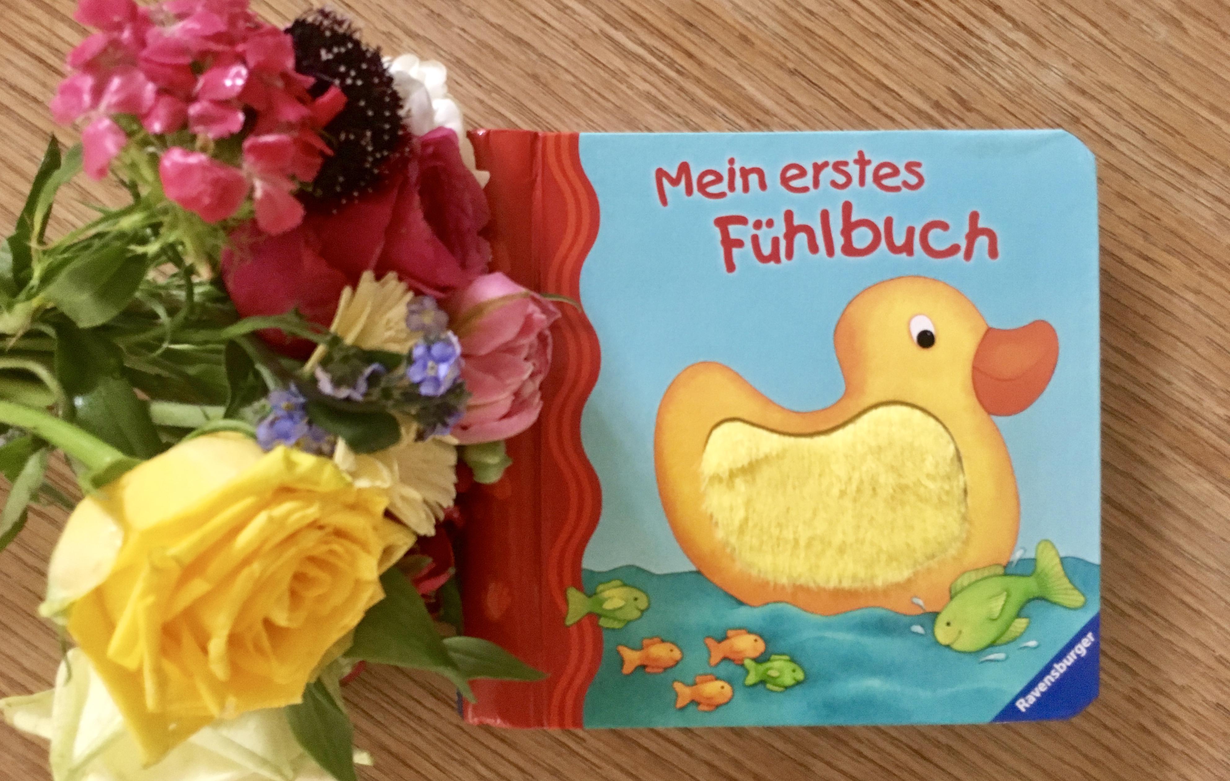 Mein erstes Fühlbuch von Sandra Grimm (Text) Monika Neubacher-Fesser (Illustration)