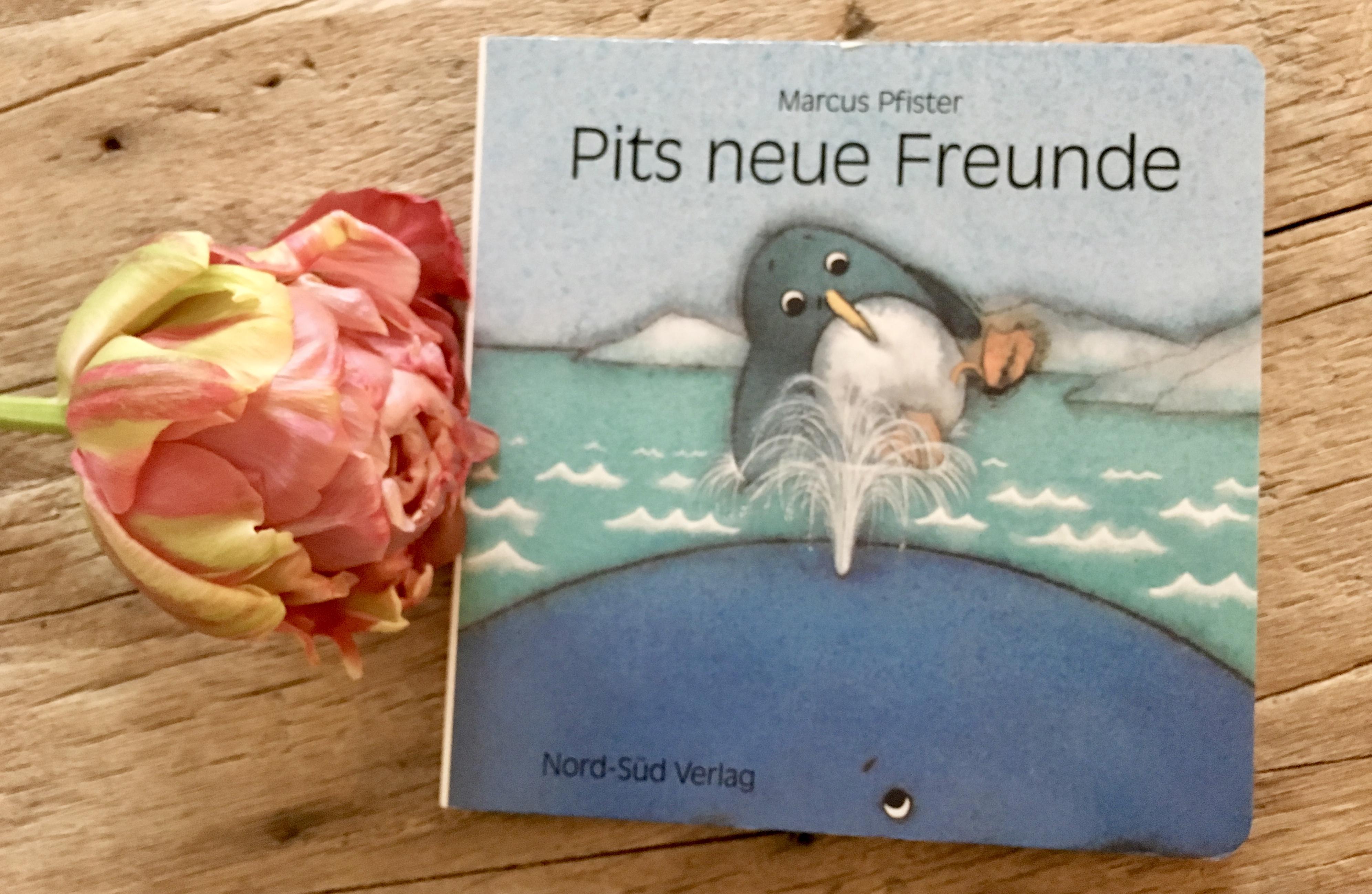 Pits neue Freunde von Marcus Pfister
