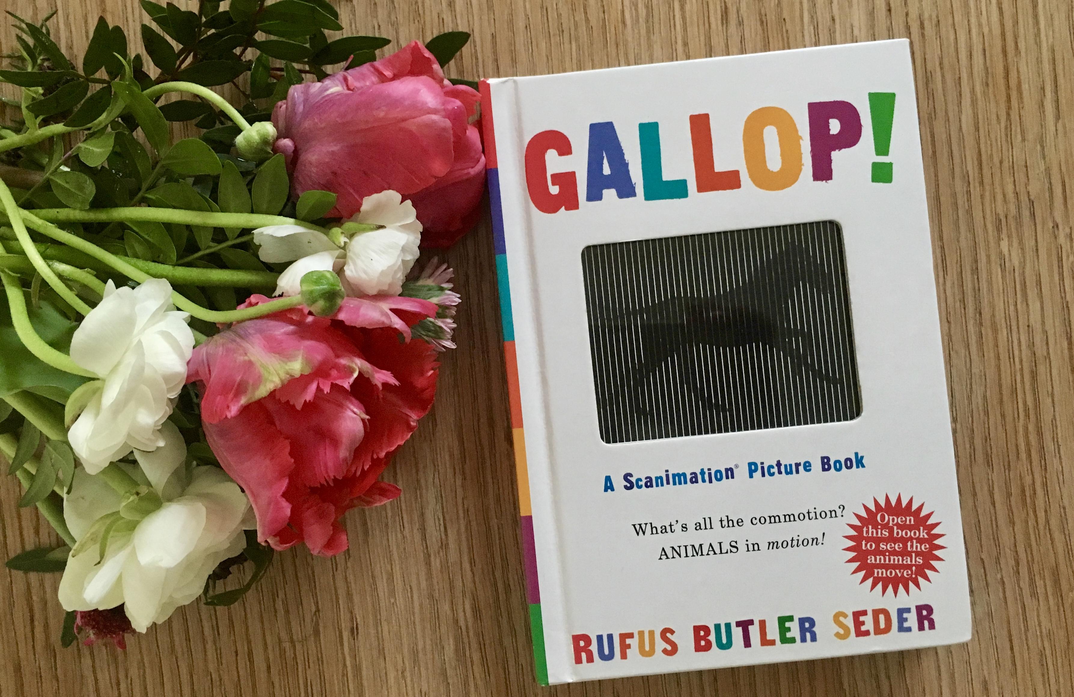 Gallop! von Rufus Butler Seder