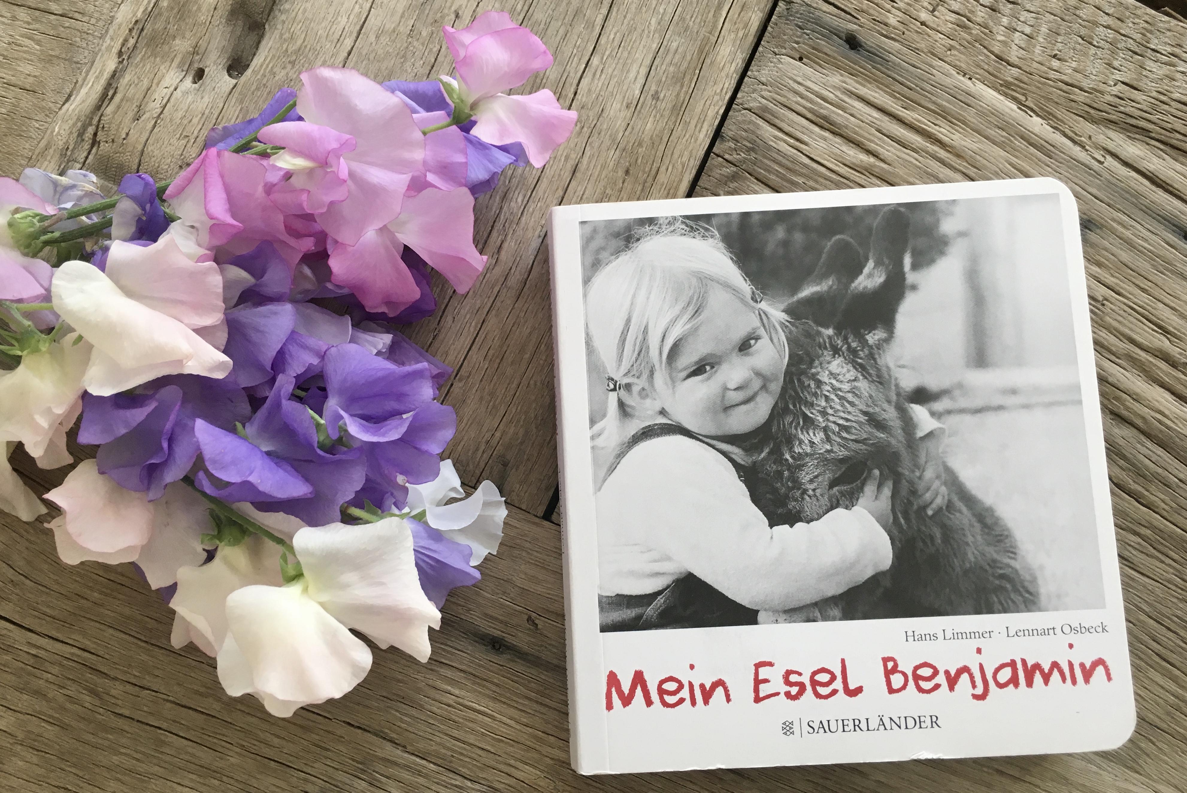 Mein Esel Benjamin von Hans Limmer und Lennart Osbeck (Fotos)