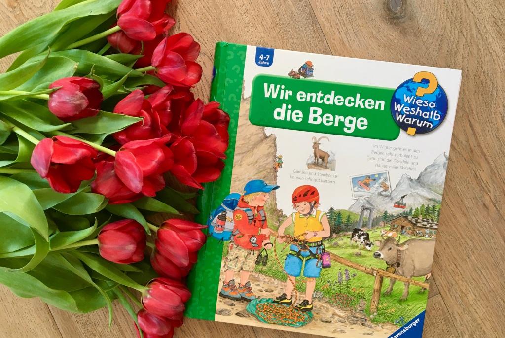 Wir entdecken die Berge von Andrea Erne (Text) und Wolfgang Metzger (Illustration)